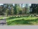 Stary cmentarz jeniecki z czasów wojny francusko-pruskiej (1870-1871) oraz I wojny światowej.